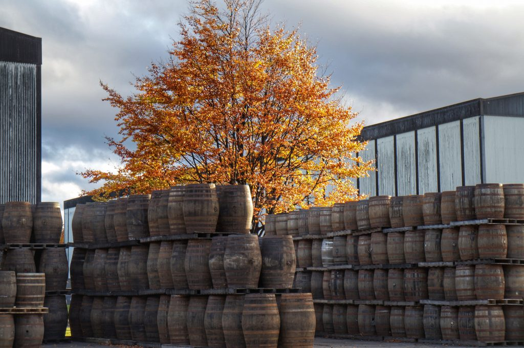 Casks, hogheads, barrels all waiting to be filled